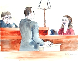 Don Bosch questions a witness in the Baumgartner trial